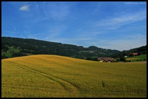 Countryside by t-sergiu