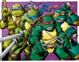 Tmntidwcolor by teamlattie
