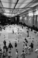 Judo  warming up by Judofighter78