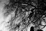 Tendrils of Darkness by EarthHart