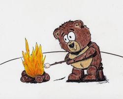 Campfire Teddy by bnspencer