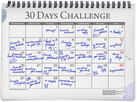 30 Days Challenge Meme by ryoshi-un