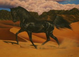 Black Arabian Stallion by Canis-Lupess