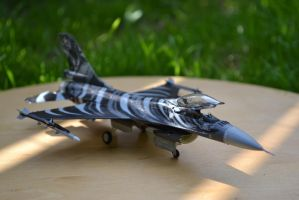 F-16 Mlu Tigermeet 2009 (side) by ObieFreak