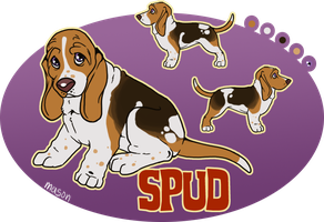 x_. Spud the Basset by srspibble