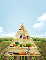 food pyramid 1 by trizen