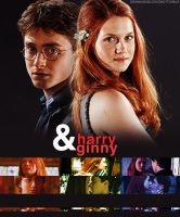 Harry and Ginny Banner by anadoring