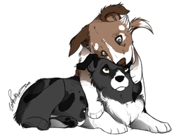 Scot and Zoe Pups by CatLuvsCookies