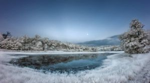 Lake of the Immortal Ostrich - Infrared Lake by Archangelical
