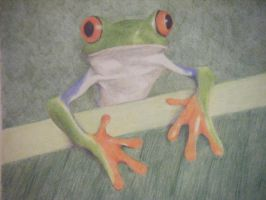 Hello Froggy by whimsycatcher