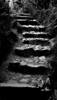 Dark Steps by Forestina-Fotos