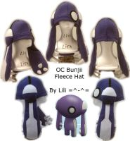 OC Bunjii Hat by LiliNeko