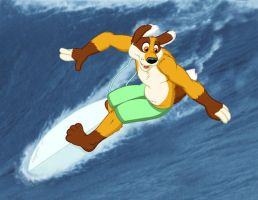 Rollie Surfing by mlaproductions
