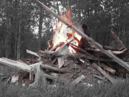 Bonfire in Black and White by SerenityEryx