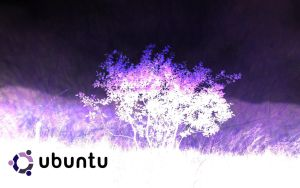 Purple Ubuntu WSWL by 24Scorpions