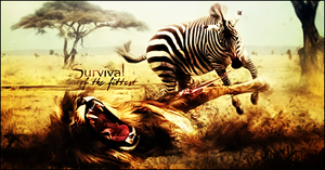 Survival of the Fittest by Anthrax817