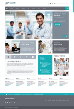 Cacoon Business WP Theme by wpthemes