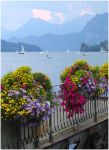Postcard from Lucerne by Daywish