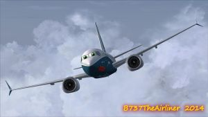 Silly Guppy Ahead! by B737TheAirliner