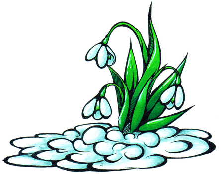 Snowdrops by Franken-Fish