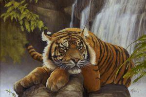 Shere Khan by thomsontm