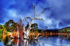 Lake Eildon by djzontheball