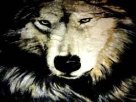 Wolf Blanket by DCProductions223