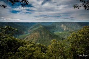 Morton National Park by CasualImages