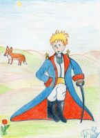 le petit prince by angeloup