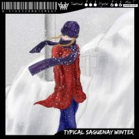 Typical Saguenay winter by northdrow