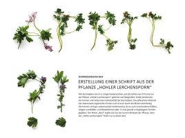 Alphabet made with plants by designlover-jenna