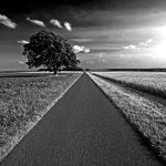 straight ahead by augenweide