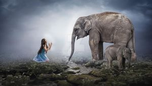 Friendship by Somnath Photography by somnathphotography