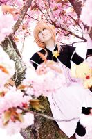 Sakura by Kairi-Heartless