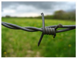 Barbed wire by emicathe