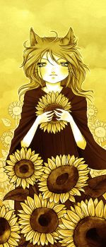 Yellow Sunflowers by ladymeow