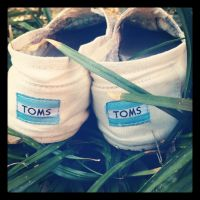 TOMS by reptilefreak14