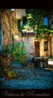 Vaison la Romaine 1 by calimer00