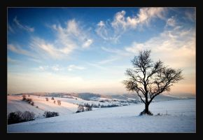 Beskid Sadecki Mountains III by KarolP
