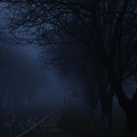 lost in their shadow by FlorinALF