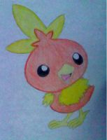 Torchic by Brainlemonade