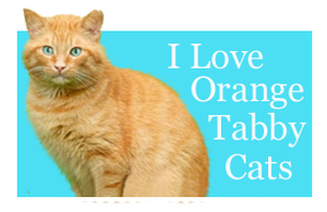 I Love Orange Tabby Cats by Loulou13