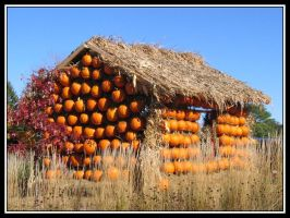 Pumpkin Hut by midgard