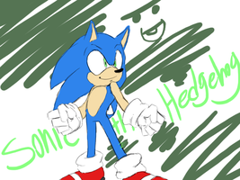 sonic doodle by donioTH