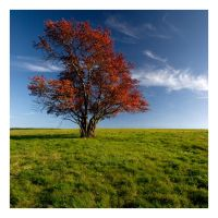 Lovers by one-shot-below