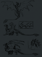 Dragon sketches by ShadeDreams