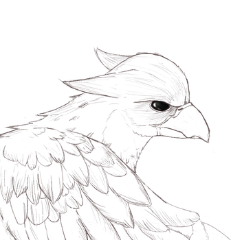 Hippogriff lineart by CH33ZUS