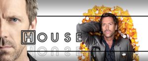 Dr house by robote
