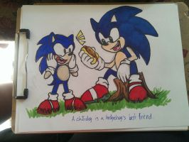 Happy 21st Sonic! by ScittyKitty