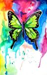 Butterfly by Lucky978